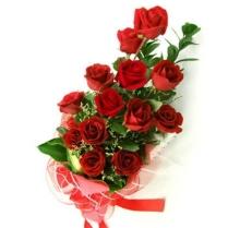 12-rose-rosse-significato_b[1]